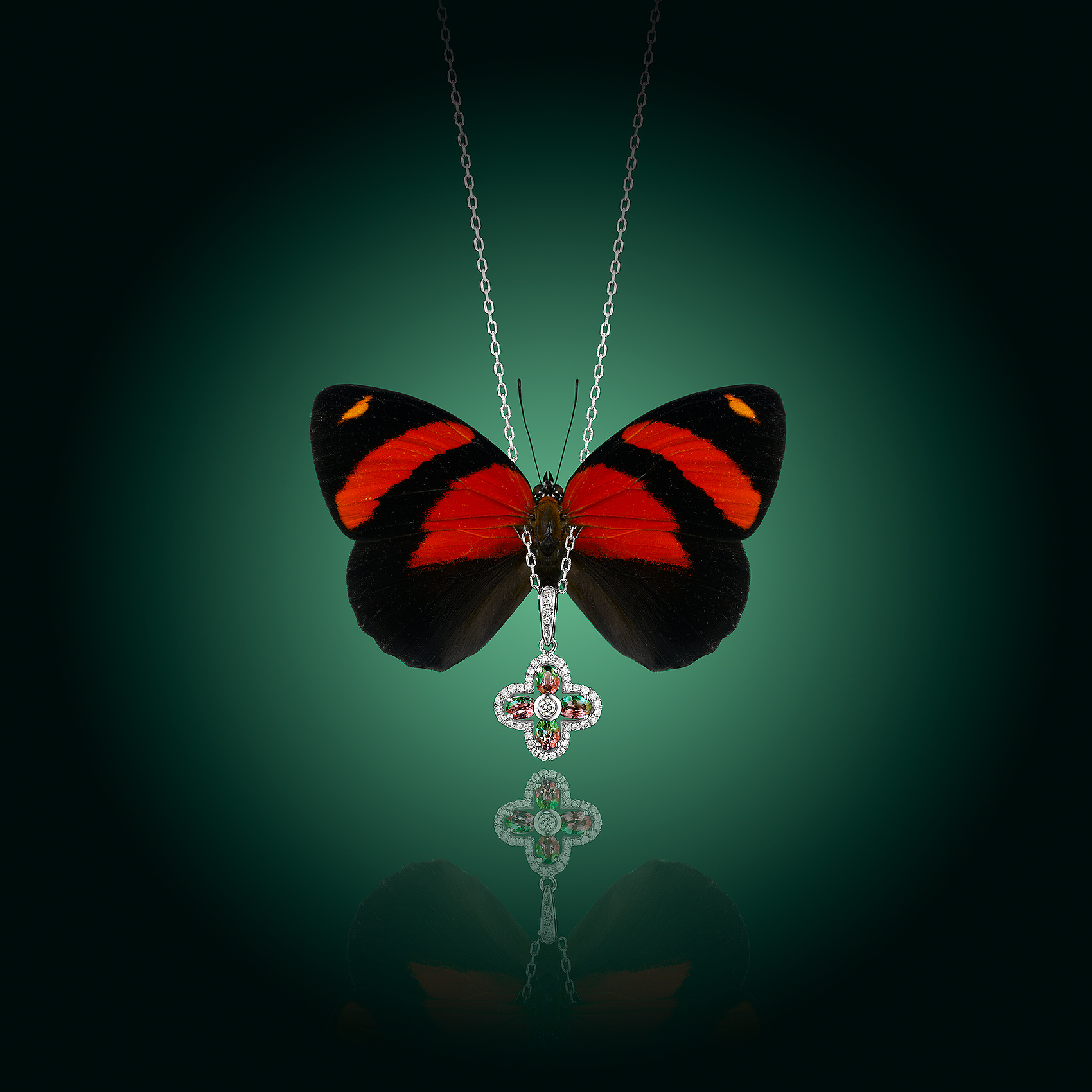 Jewelry with Butterfly
