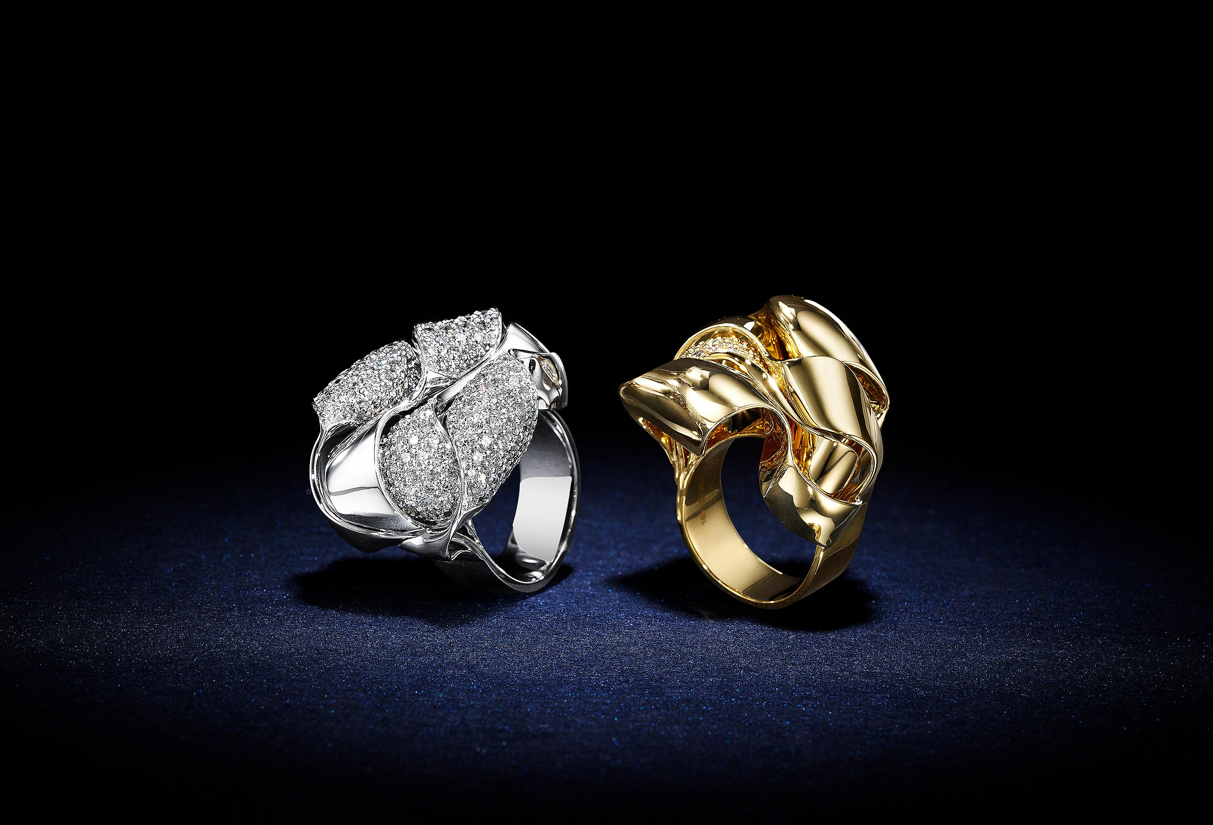 Shiny-and-Encrusted-Rings